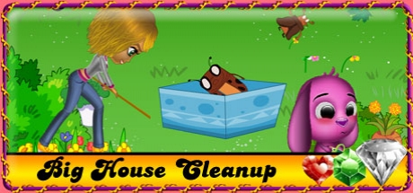 Big House Cleanup