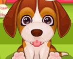 Too Cute Puppy Care
