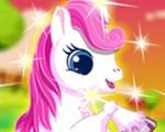 Sweet Pony Care