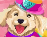 Design Your Doggy's Outift