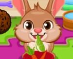 Cute Bunny Care 2